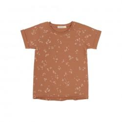 Tee-shirt Terra Stones Phil & Phae