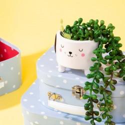 Petit Cache-Pot Chien Sass & Belle