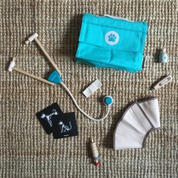 Ma valise de vétérinaire Plan Toys PT3490