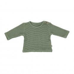 Sweat Estragon Oil Green Poudre Organic