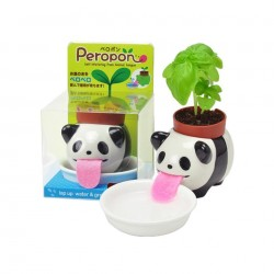 Peropon Panda Noted