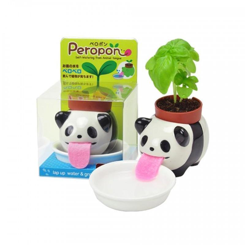 Peropon Panda Noted