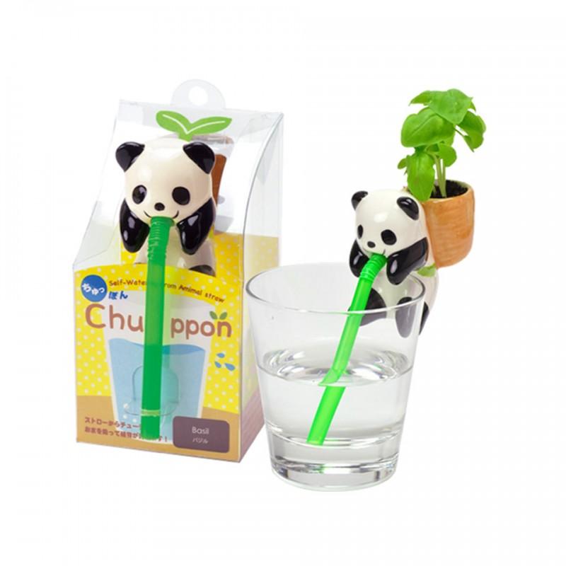 Chuppon Panda Noted
